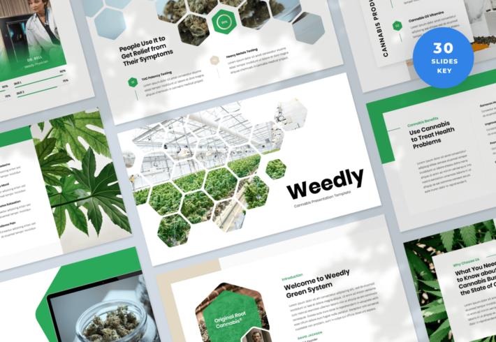 Weedly – Cannabis Keynote Presentation Template