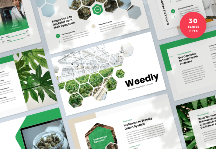 Weedly – Cannabis PowerPoint Presentation Template